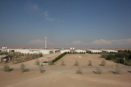 PoultryWorld - Egg production in the UAE - an inside view
